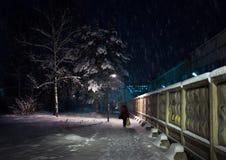 Neve na região de Moscou Manhã adiantada do inverno Rússia imagem de stock royalty free