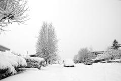 Neve na vizinhança Imagem de Stock Royalty Free