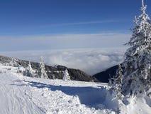 Neve, narure, sol, ruptura imagens de stock royalty free