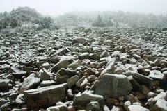Neve nas montanhas Fotos de Stock