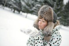Neve nas palmas Imagens de Stock