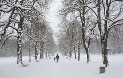 Neve nel parco a Sofia, Bulgaria 29 dicembre 2014 Fotografia Stock Libera da Diritti