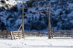 Neve nel recinto per bestiame ripartito Fotografia Stock Libera da Diritti
