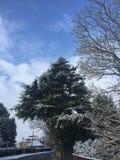 Neve nel Regno Unito nel marzo 2018 immagini stock