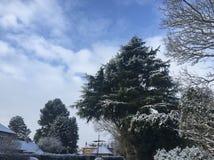 Neve nel Regno Unito nel marzo 2018 fotografie stock