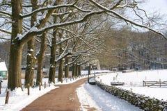 Neve nella sosta Fotografia Stock Libera da Diritti