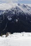neve nelle alpi Immagine Stock