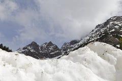 neve nelle alpi Immagini Stock