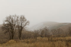 Neve nelle colline pedemontana Fotografia Stock