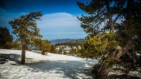 Neve nelle montagne del Cipro Immagini Stock Libere da Diritti