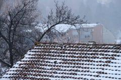 Neve no telhado da casa fotografia de stock royalty free