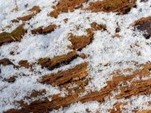 Neve nos detalhes de madeira da textura imagem de stock royalty free