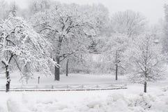 Neve nova bonita com cerca Fotos de Stock Royalty Free