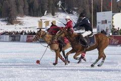 Neve Polo Cup Sankt 2017 Moritz Fotos de Stock