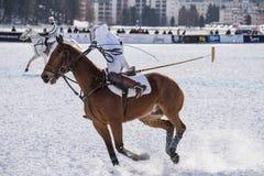 Neve Polo World Cup Sankt Moritz 2016 Fotografia de Stock