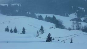 Neve que cai na floresta vídeos de arquivo