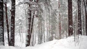 Neve que cai nas madeiras 4K filme