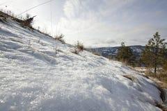 Neve que derrete no tempo de mola Imagens de Stock