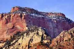 Neve rossa Zion Utah del canyon della roccia Fotografia Stock
