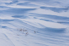 Neve scolpita Fotografia Stock Libera da Diritti