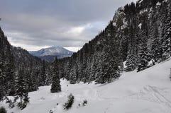 A neve segue a condução longe à montanha no inverno Fotografia de Stock