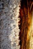 Neve su legno Fotografia Stock Libera da Diritti