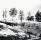 Neve su una collina ripida e rigida Fotografia Stock