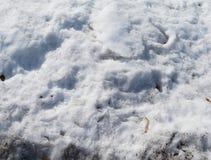 Neve suja foto de stock royalty free