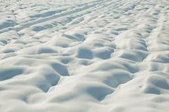 Neve sul campo Fotografie Stock Libere da Diritti