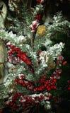 Neve sull'albero di Natale Immagine Stock
