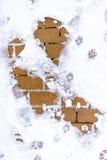 Neve sulla terra Immagine Stock