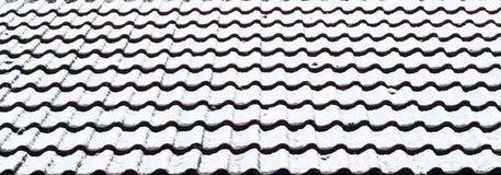 Neve sulle mattonelle di tetto Immagini Stock