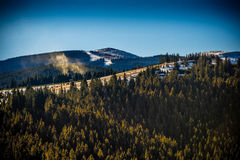 Neve sulle montagne in Paltinis Fotografia Stock Libera da Diritti