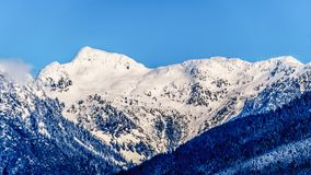 A neve tampada repica os picos formigar e outros picos de montanha das montanhas da costa no Columbia Britânica, Canadá Foto de Stock Royalty Free