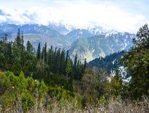 A neve tampou a montanha & a floresta em Naran Kaghan Valley, Paquistão Fotografia de Stock