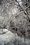 Neve urbana Immagini Stock