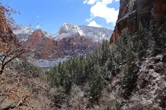 Neve in Zion National Park! L'Utah fotografia stock