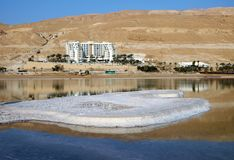 Morning on the Dead Sea in Neve Zohar royalty free stock images