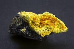 Nevel van becquerelitekristallen met uranophanenaalden van oude Shinkolobwe royalty-vrije stock afbeeldingen