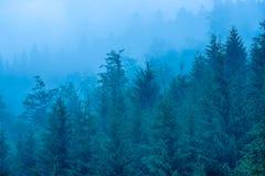 Nevelig berglandschap stock fotografie