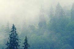 Nevelig berglandschap royalty-vrije stock afbeelding
