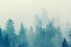 Nevelig berglandschap royalty-vrije stock fotografie