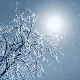 Nevelig de winterbeeld royalty-vrije stock afbeelding