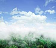 Nevelig dromerig landschap Royalty-vrije Stock Fotografie