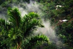 Nevelig landschap in Buenavista, Quindio royalty-vrije stock fotografie