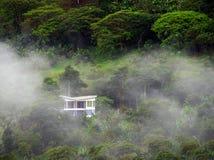 Nevelig landschap in Buenavista, Quindio stock fotografie