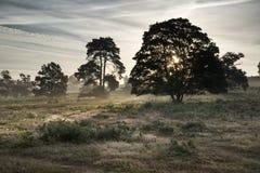 Nevelig landschap tijdens zonsopgang in Engels plattelandslandschap Royalty-vrije Stock Foto