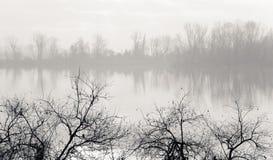 Nevelige banken van een rivier Royalty-vrije Stock Foto's