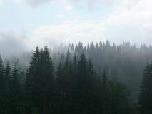 Nevelige bergen royalty-vrije stock afbeelding