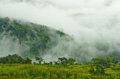 Nevelige bergen in het regenachtige seizoen Royalty-vrije Stock Foto